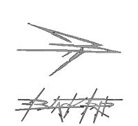 blacktripmetal.com